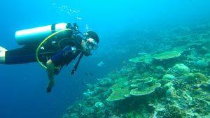 4 des meilleurs spots de plongée à découvrir aux Maldives